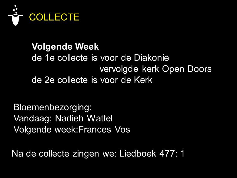 Bloemenbezorging: Vandaag: Nadieh Wattel Volgende week:Frances Vos COLLECTE Volgende Week de 1e collecte is voor de Diakonie vervolgde kerk Open Doors