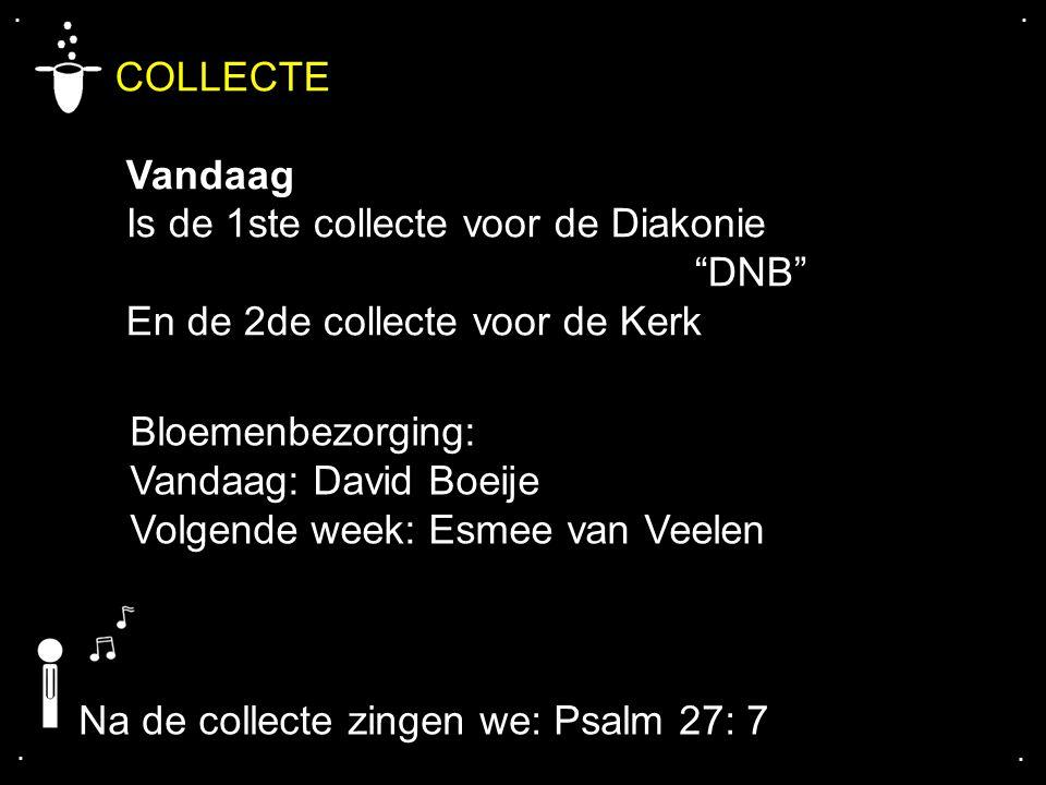 """.... COLLECTE Vandaag Is de 1ste collecte voor de Diakonie """"DNB"""" En de 2de collecte voor de Kerk Bloemenbezorging: Vandaag: David Boeije Volgende week"""