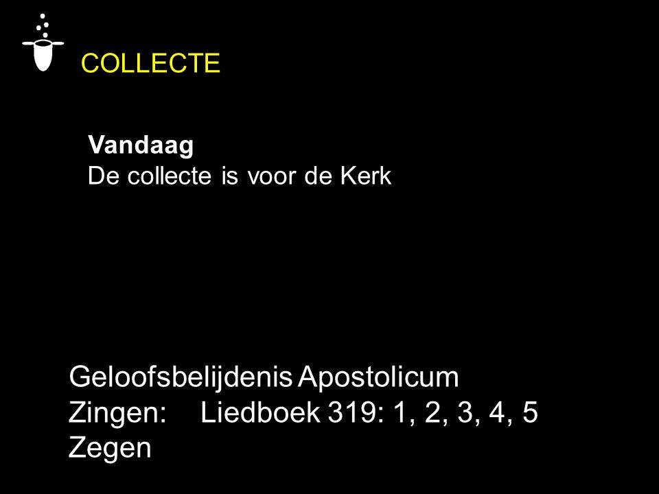 COLLECTE Vandaag De collecte is voor de Kerk Geloofsbelijdenis Apostolicum Zingen:Liedboek 319: 1, 2, 3, 4, 5 Zegen