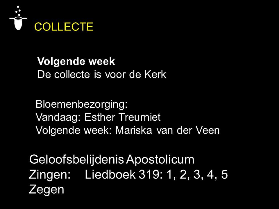 COLLECTE Volgende week De collecte is voor de Kerk Bloemenbezorging: Vandaag: Esther Treurniet Volgende week: Mariska van der Veen Geloofsbelijdenis A