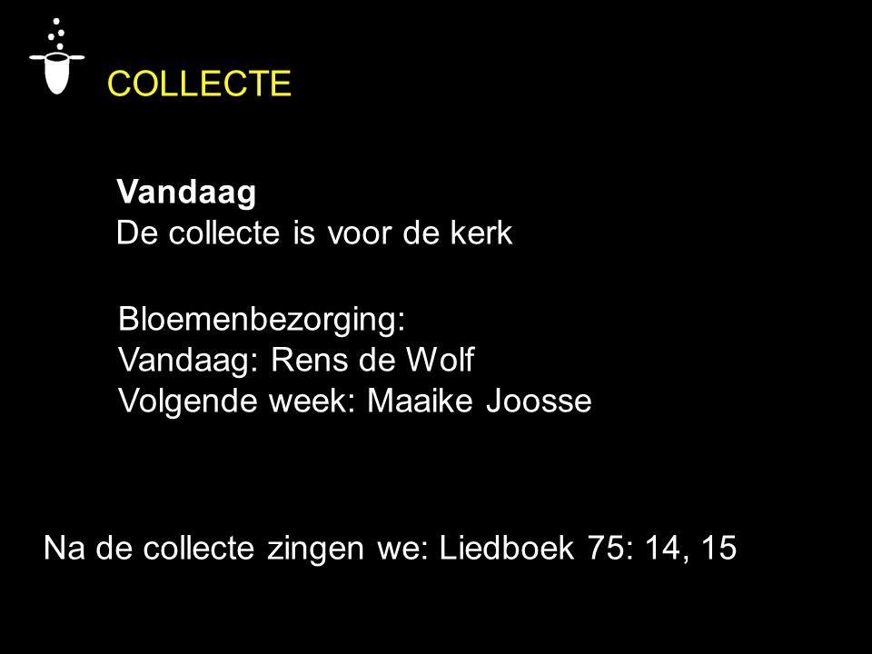Bloemenbezorging: Vandaag: Rens de Wolf Volgende week: Maaike Joosse COLLECTE Vandaag De collecte is voor de kerk