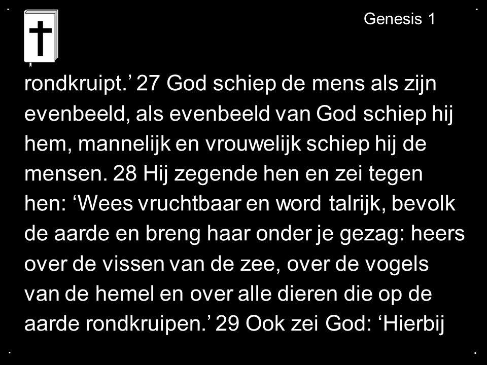 .... Genesis 1 rondkruipt.' 27 God schiep de mens als zijn evenbeeld, als evenbeeld van God schiep hij hem, mannelijk en vrouwelijk schiep hij de mens
