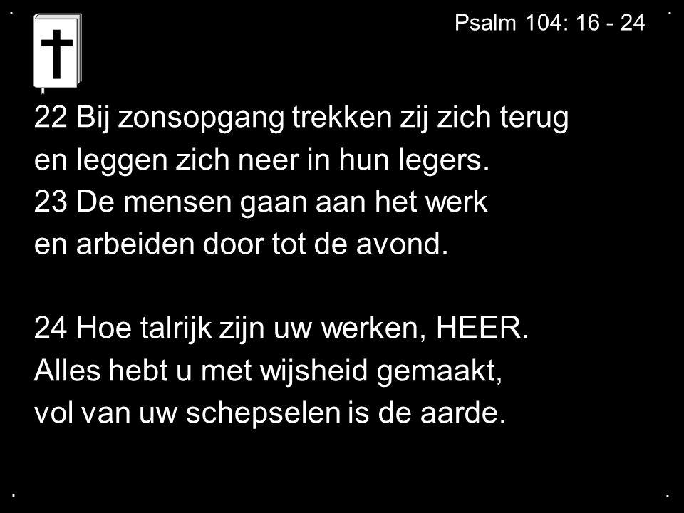 .... Psalm 104: 16 - 24 22 Bij zonsopgang trekken zij zich terug en leggen zich neer in hun legers.