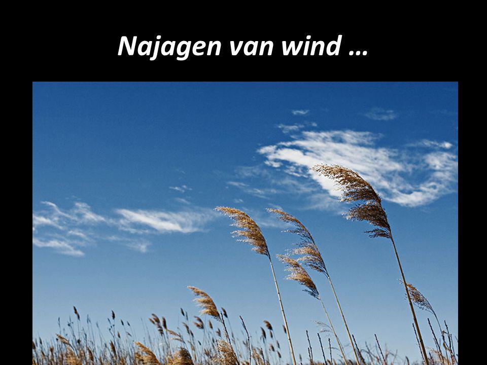 Najagen van wind …