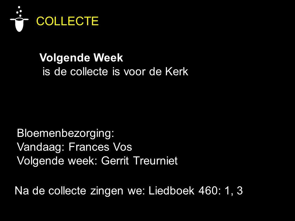 Bloemenbezorging: Vandaag: Frances Vos Volgende week: Gerrit Treurniet COLLECTE Volgende Week is de collecte is voor de Kerk Na de collecte zingen we: Liedboek 460: 1, 3