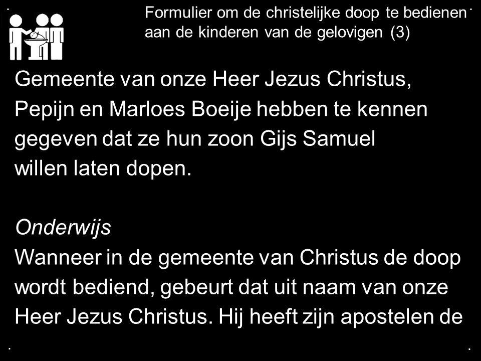 .... Formulier om de christelijke doop te bedienen aan de kinderen van de gelovigen (3) Gemeente van onze Heer Jezus Christus, Pepijn en Marloes Boeij