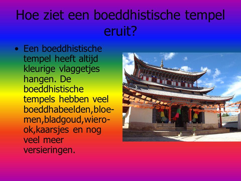 Hoe ziet een boeddhistische tempel eruit? Een boeddhistische tempel heeft altijd kleurige vlaggetjes hangen. De boeddhistische tempels hebben veel boe