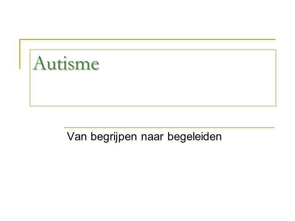 Autisme Van begrijpen naar begeleiden