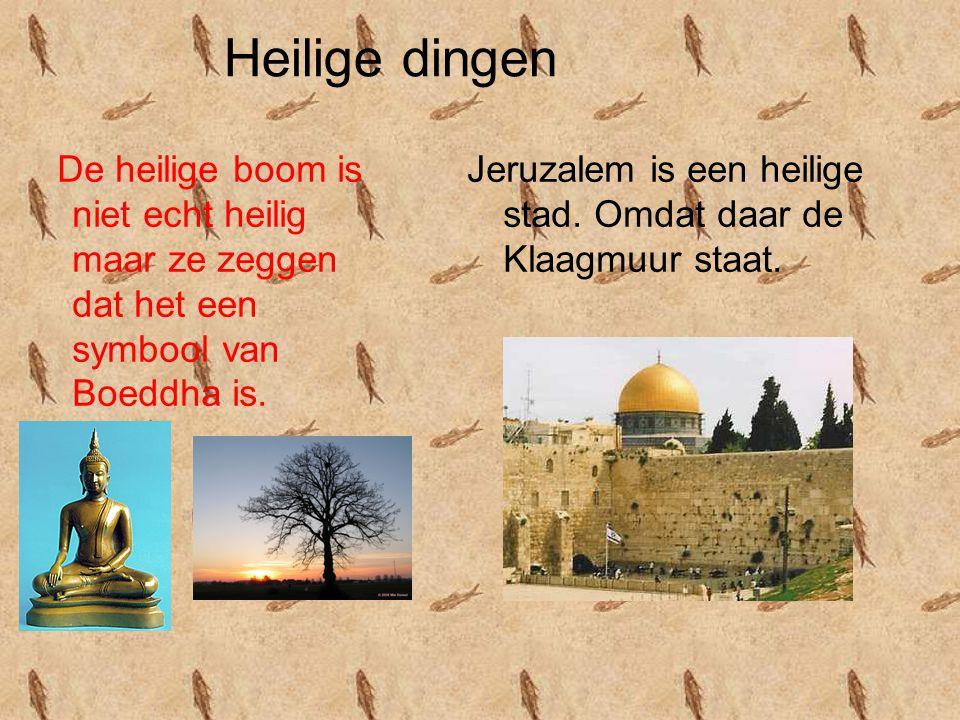 Heilige dingen De heilige boom is niet echt heilig maar ze zeggen dat het een symbool van Boeddha is. Jeruzalem is een heilige stad. Omdat daar de Kla