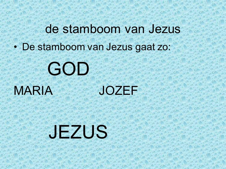 de stamboom van Jezus De stamboom van Jezus gaat zo: GOD MARIA JOZEF JEZUS