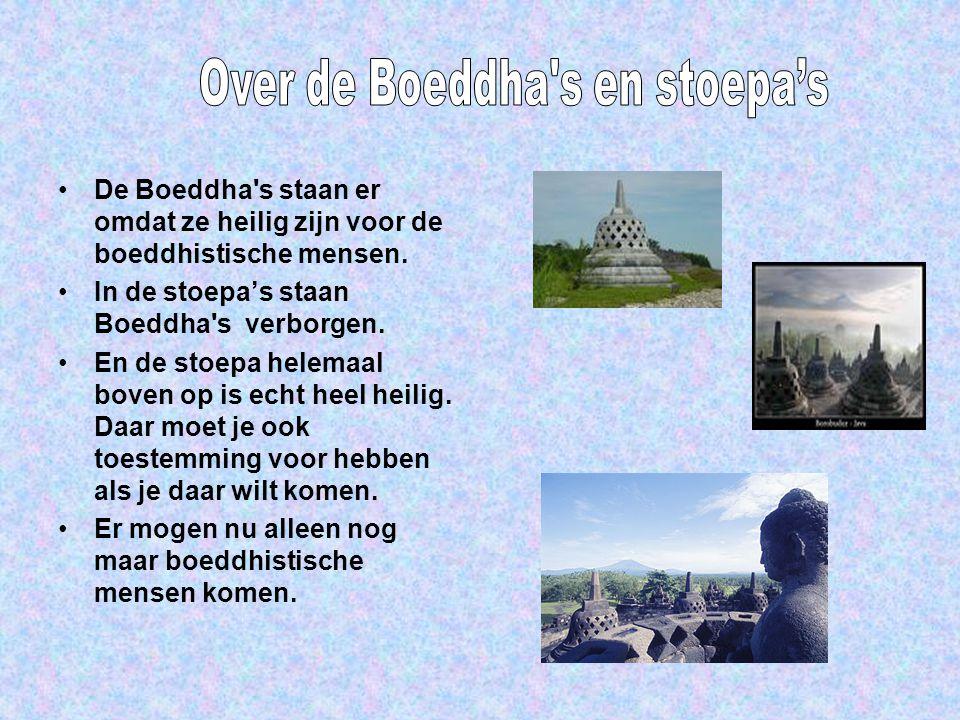 De Boeddha s staan er omdat ze heilig zijn voor de boeddhistische mensen.