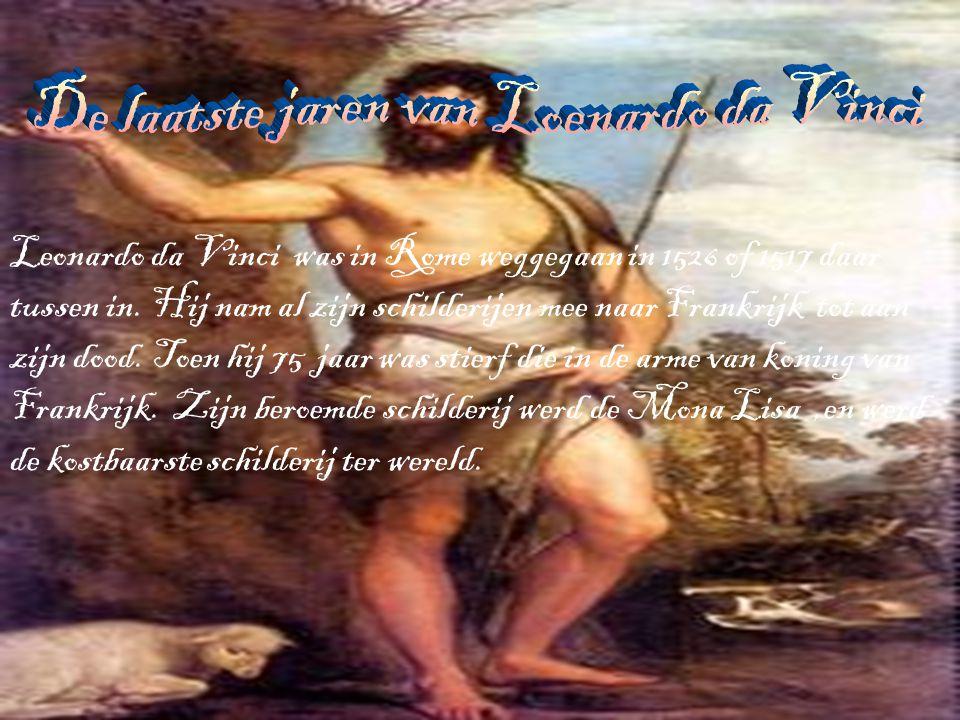De Homo Universalis is een perspectief van Leonardo Da Vinci.