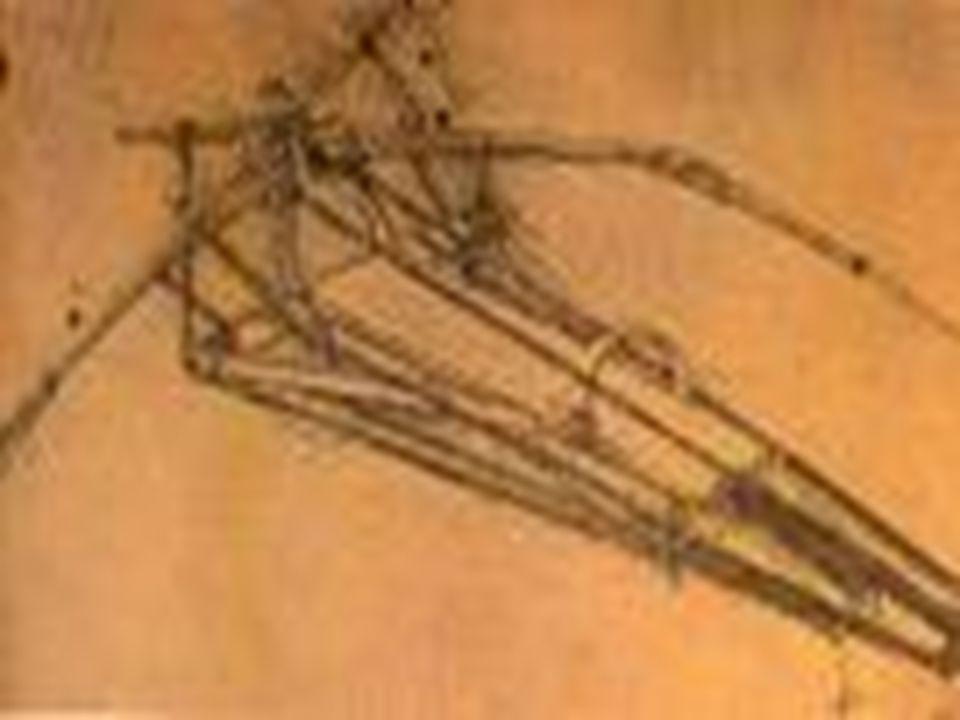 Leonardo da Vinci maakte veel uitvindingen.