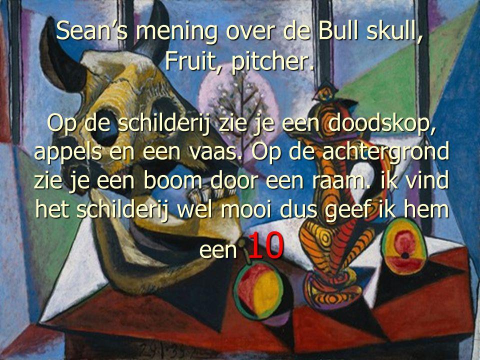 Sean's mening over de Bull skull, Fruit, pitcher. Op de schilderij zie je een doodskop, appels en een vaas. Op de achtergrond zie je een boom door een