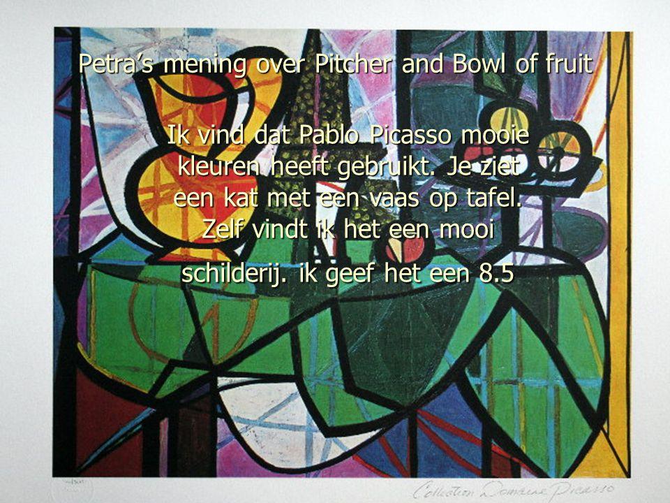 Petra's mening over Pitcher and Bowl of fruit Ik vind dat Pablo Picasso mooie kleuren heeft gebruikt. Je ziet een kat met een vaas op tafel. Zelf vind