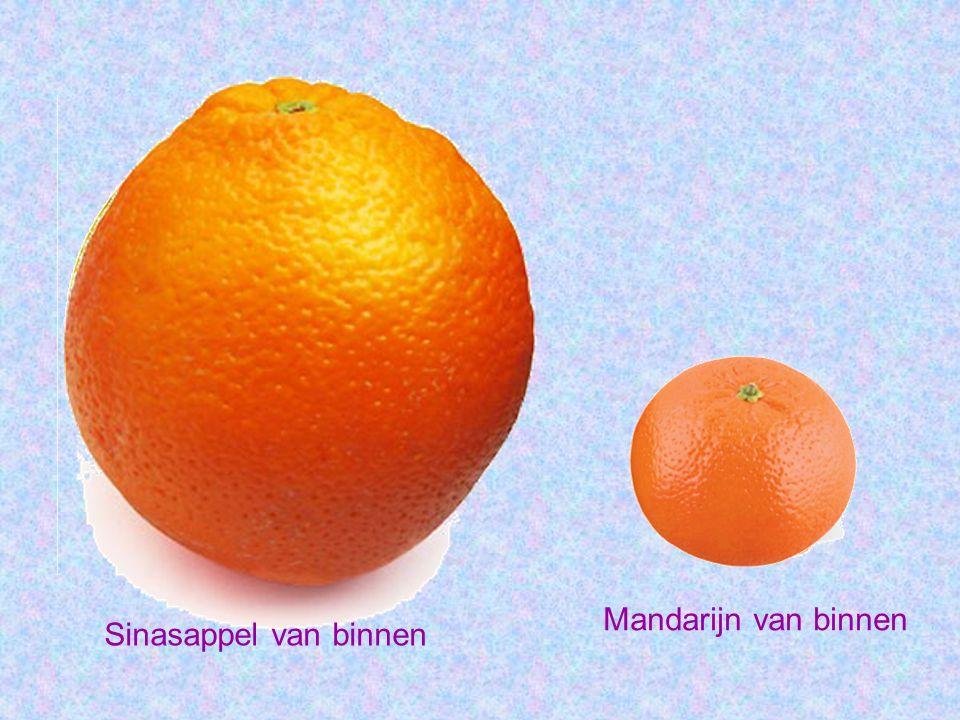 Sinasappel van binnen Mandarijn van binnen