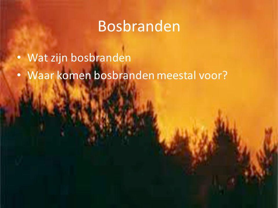Bosbranden Wat zijn bosbranden Waar komen bosbranden meestal voor?