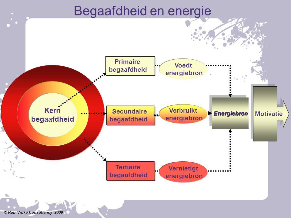 Kern begaafdheid Primaire begaafdheid Secundaire begaafdheid Tertiaire begaafdheid EnergiebronEnergiebron Voedt energiebron Vernietigt energiebron Ver