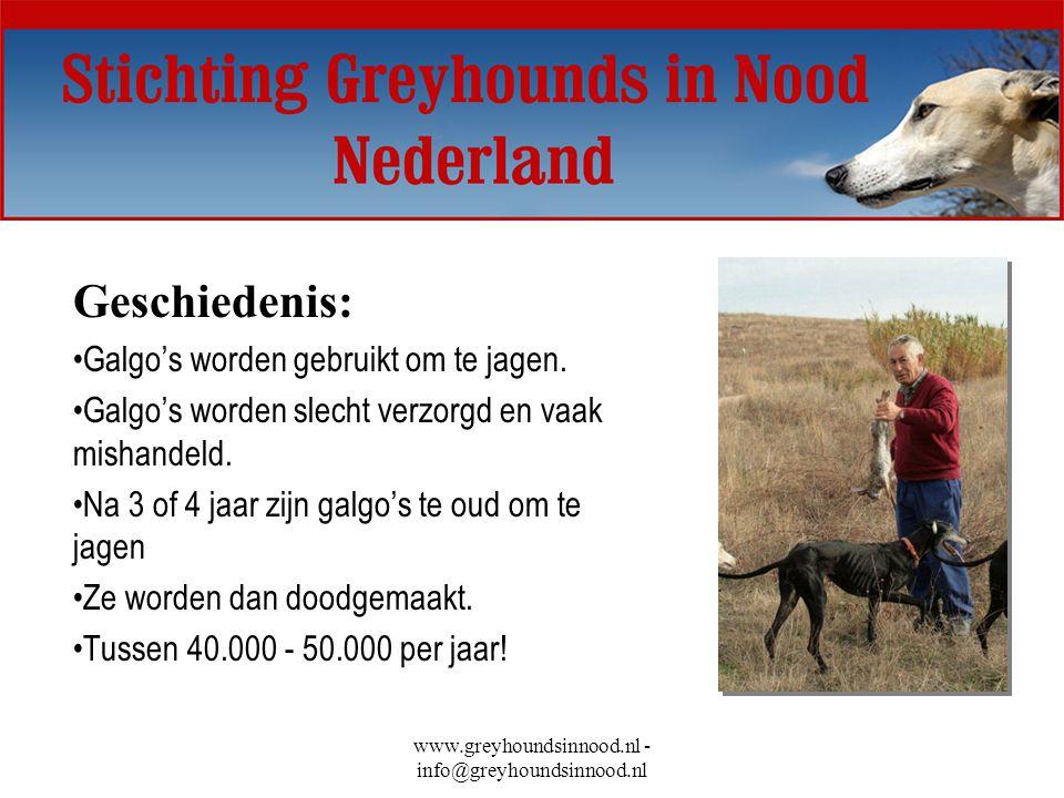 www.greyhoundsinnood.nl - info@greyhoundsinnood.nl Geschiedenis: Galgo's worden gebruikt om te jagen. Galgo's worden slecht verzorgd en vaak mishandel