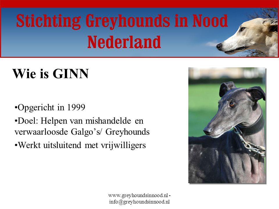 www.greyhoundsinnood.nl - info@greyhoundsinnood.nl Wie is GINN Opgericht in 1999 Doel: Helpen van mishandelde en verwaarloosde Galgo's/ Greyhounds Wer