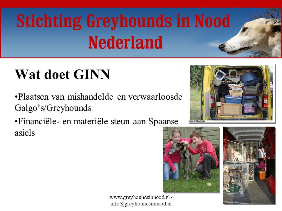 www.greyhoundsinnood.nl - info@greyhoundsinnood.nl Wat doet GINN Plaatsen van mishandelde en verwaarloosde Galgo's/Greyhounds Financiële- en materiële