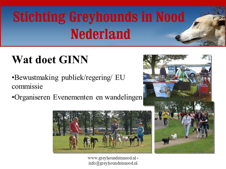 www.greyhoundsinnood.nl - info@greyhoundsinnood.nl Hoe kun je helpen ( alleen of met een groepje ): Geld inzamelen –Statiegeld, vlooienmarkt, Rock's vijfjes sparen –Koekjes/cupcakes verkopen Inzamelen hulpgoederen voor Spanje –Voer, medicijnen, vlooienhalsbanden etc.