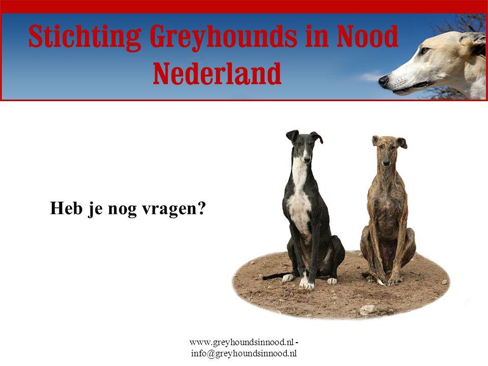 www.greyhoundsinnood.nl - info@greyhoundsinnood.nl Heb je nog vragen?
