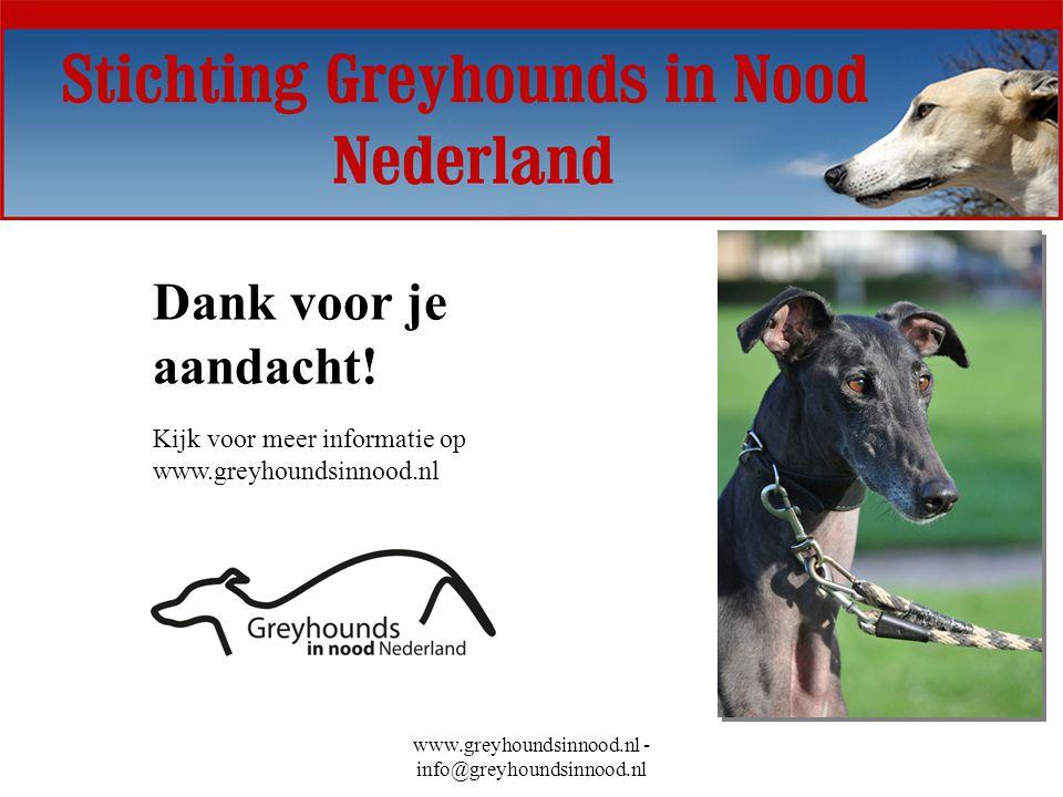 www.greyhoundsinnood.nl - info@greyhoundsinnood.nl Dank voor je aandacht! Kijk voor meer informatie op www.greyhoundsinnood.nl