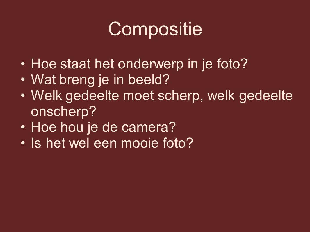 Compositie Hoe staat het onderwerp in je foto? Wat breng je in beeld? Welk gedeelte moet scherp, welk gedeelte onscherp? Hoe hou je de camera? Is het