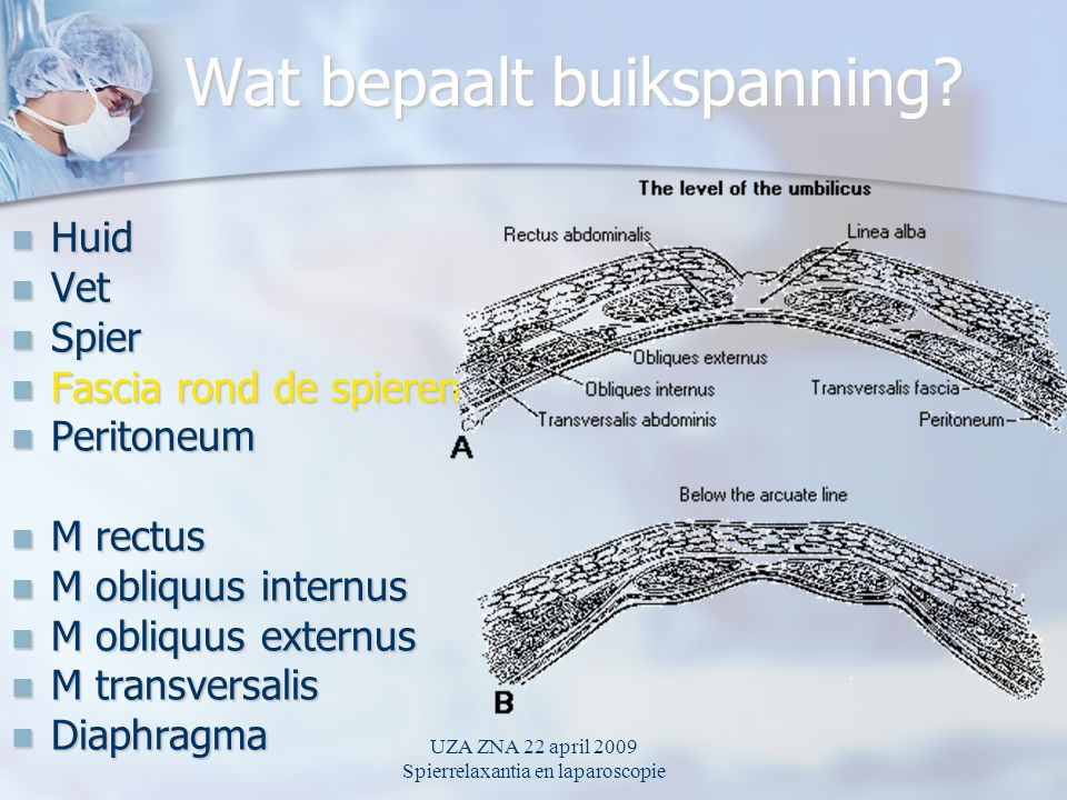 UZA ZNA 22 april 2009 Spierrelaxantia en laparoscopie Wat bepaalt buikspanning? Huid Huid Vet Vet Spier Spier Fascia rond de spieren Fascia rond de sp