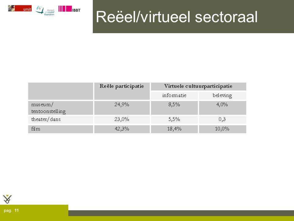 pag. 11 Reëel/virtueel sectoraal
