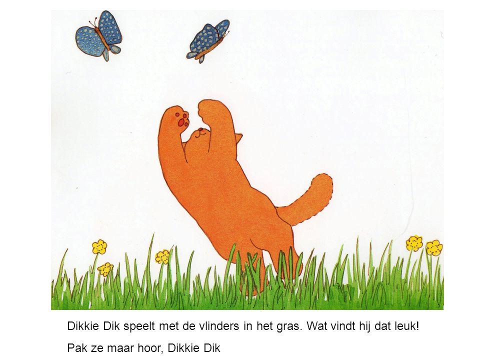 Dikkie Dik speelt met de vlinders in het gras. Wat vindt hij dat leuk! Pak ze maar hoor, Dikkie Dik