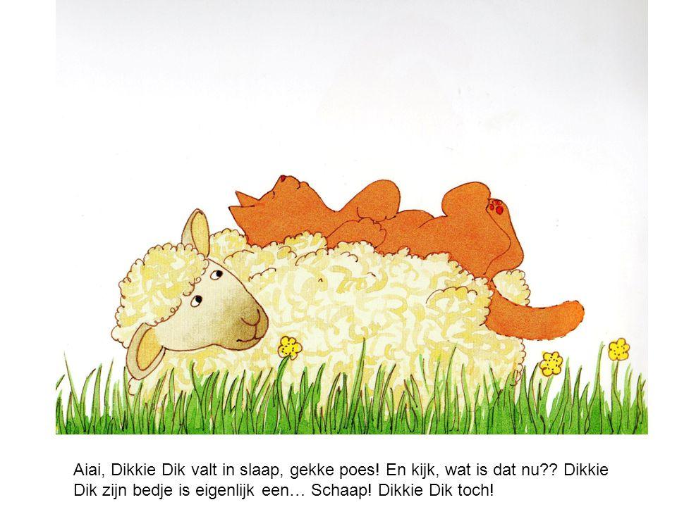 Oh oooh! Wat nu, het schaap staat recht… en Dikkie Dik?? Die valt op de grond, boempatat!