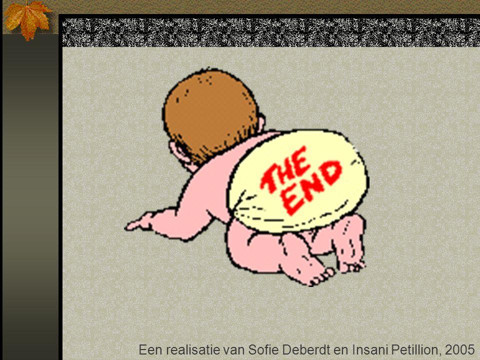 Een realisatie van Sofie Deberdt en Insani Petillion, 2005