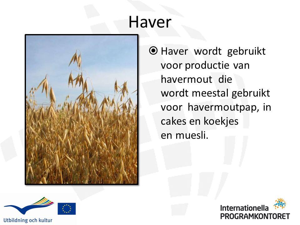 Haver  Haver wordt gebruikt voor productie van havermout die wordt meestal gebruikt voor havermoutpap, in cakes en koekjes en muesli.