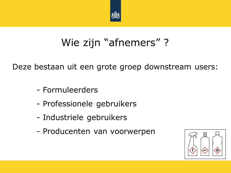 - Formuleerders - Professionele gebruikers - Industriele gebruikers - Producenten van voorwerpen Wie zijn afnemers .