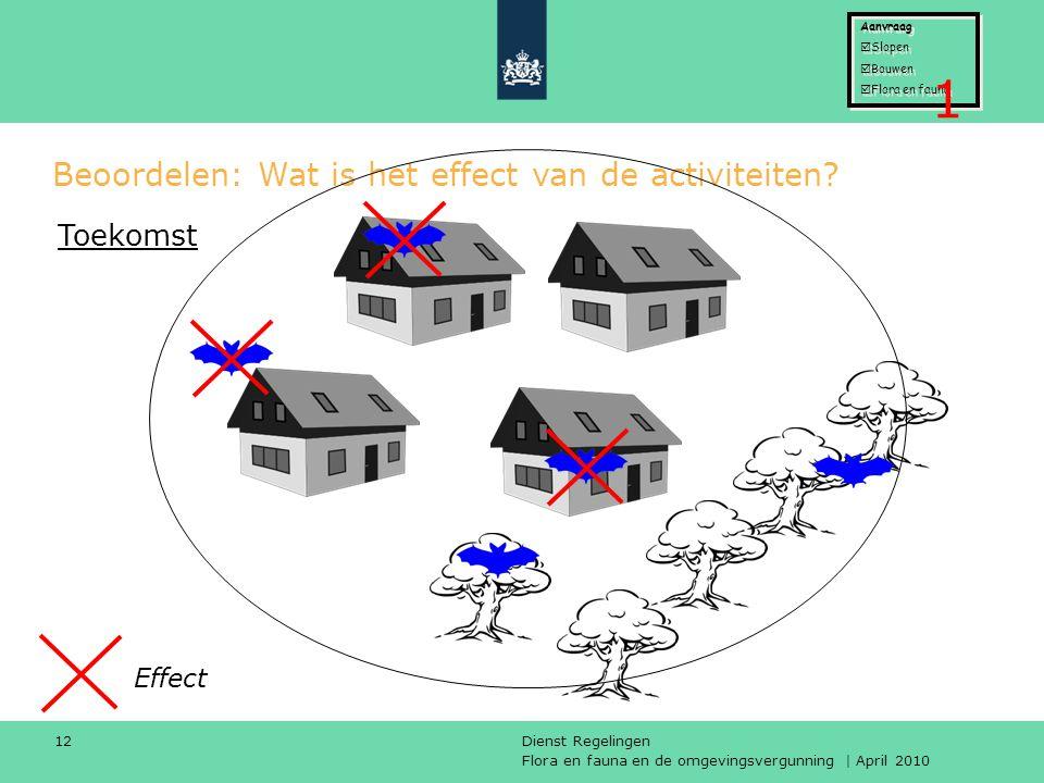 Flora en fauna en de omgevingsvergunning | April 2010 Dienst Regelingen 12 Beoordelen: Wat is het effect van de activiteiten? Effect Toekomst Aanvraag