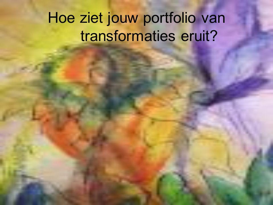 Hoe ziet jouw portfolio van transformaties eruit?