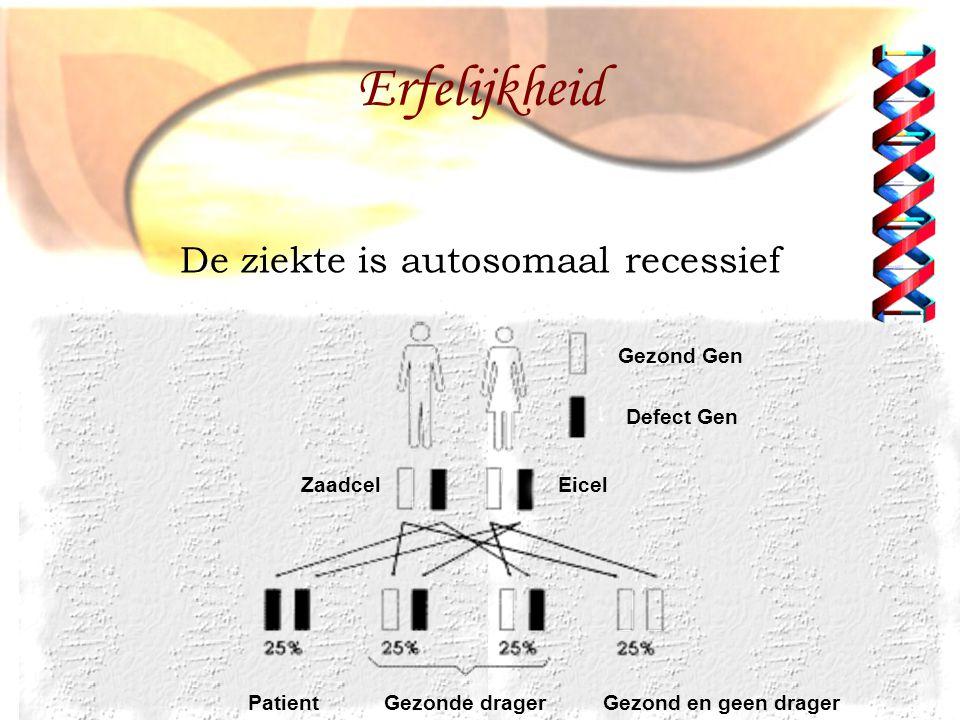 Gezond Gen Defect Gen ZaadcelEicel PatientGezonde dragerGezond en geen drager De ziekte is autosomaal recessief Erfelijkheid
