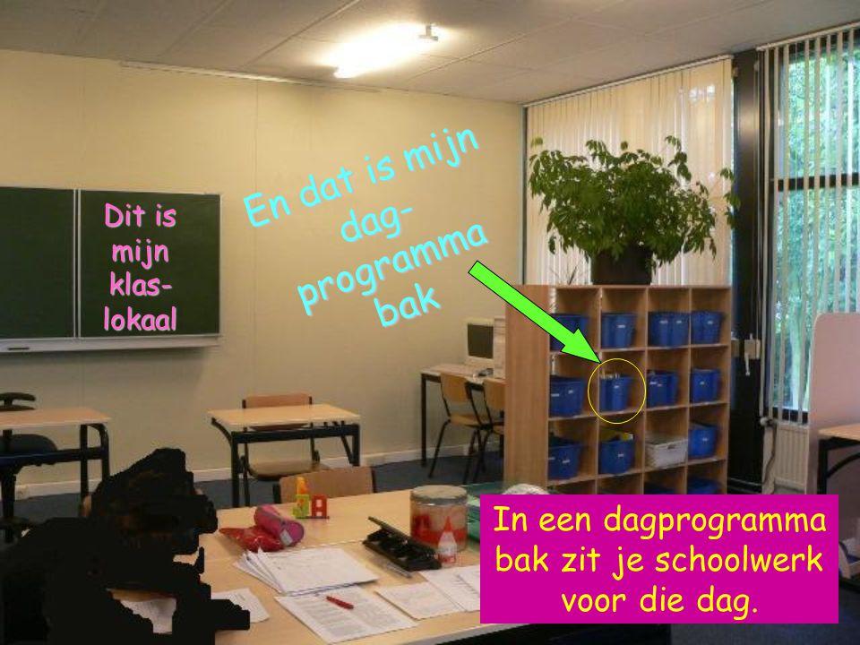 De school is best klein, vind ik. Er zijn maar 3 groepen. Maar zo kan iedereen wel goed op zijn eigen niveau werken.