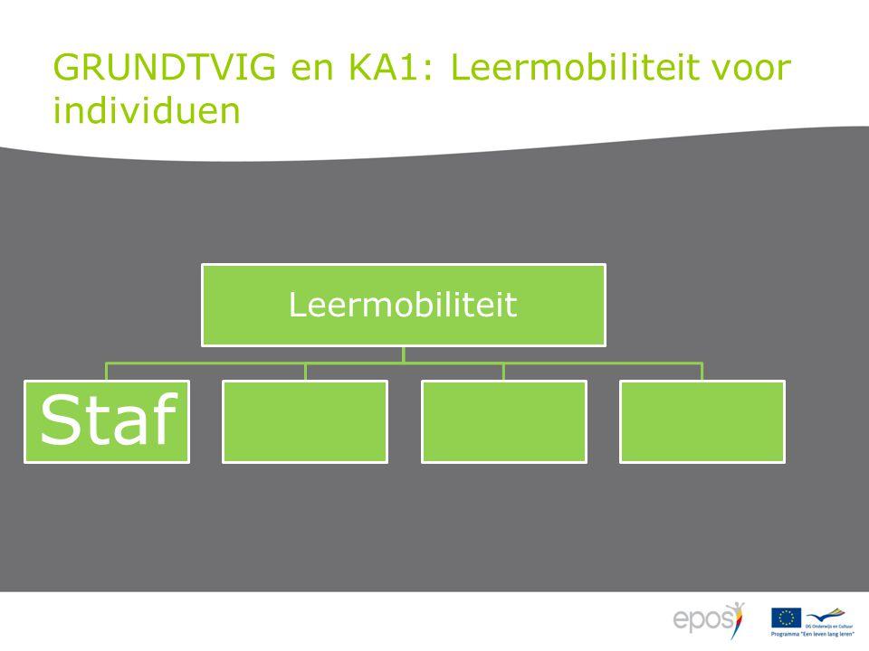 GRUNDTVIG en KA1: Leermobiliteit voor individuen