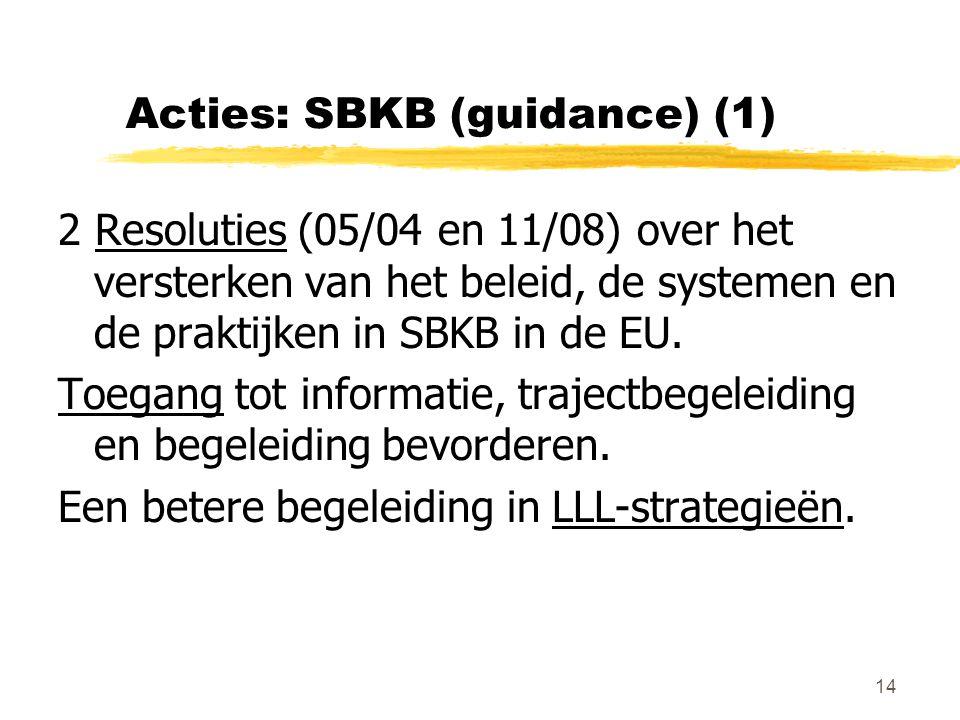 14 Acties: SBKB (guidance) (1) 2 Resoluties (05/04 en 11/08) over het versterken van het beleid, de systemen en de praktijken in SBKB in de EU.