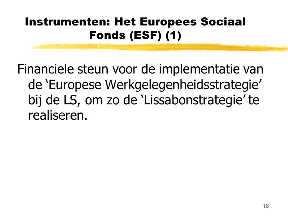 18 Instrumenten: Het Europees Sociaal Fonds (ESF) (1) Financiele steun voor de implementatie van de 'Europese Werkgelegenheidsstrategie' bij de LS, om zo de 'Lissabonstrategie' te realiseren.
