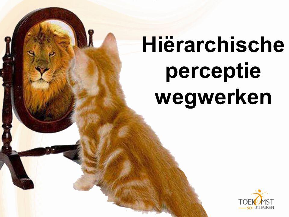 Hiërarchische perceptie wegwerken