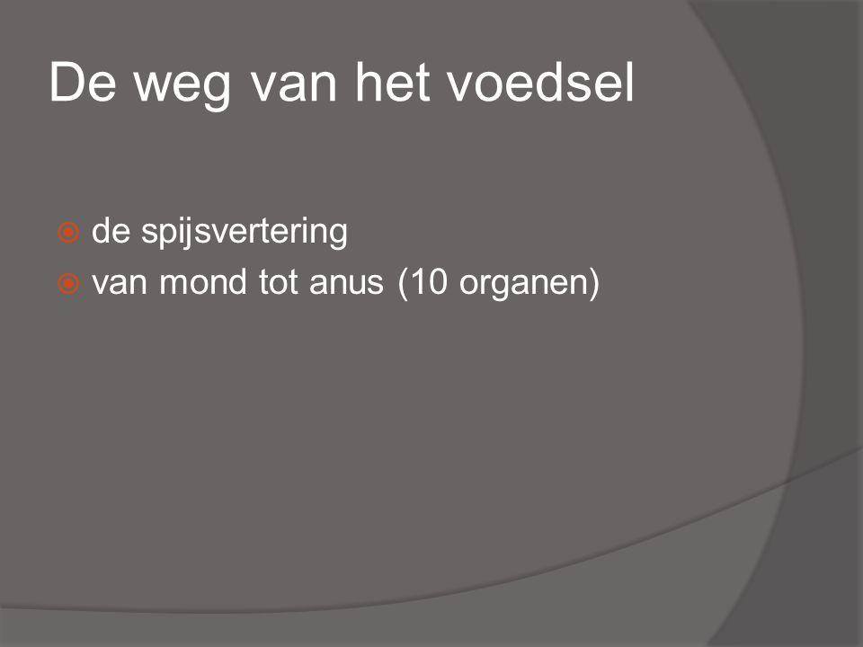 De weg van het voedsel  de spijsvertering  van mond tot anus (10 organen)