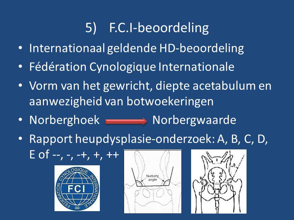 5)F.C.I-beoordeling Internationaal geldende HD-beoordeling Fédération Cynologique Internationale Vorm van het gewricht, diepte acetabulum en aanwezigh