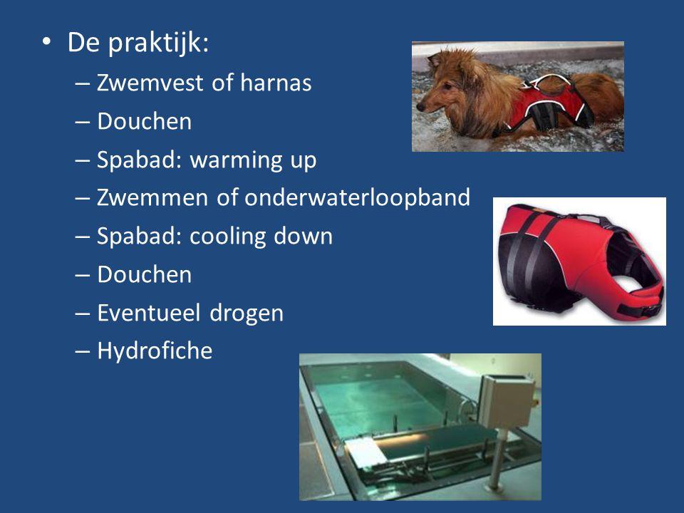 De praktijk: – Zwemvest of harnas – Douchen – Spabad: warming up – Zwemmen of onderwaterloopband – Spabad: cooling down – Douchen – Eventueel drogen –