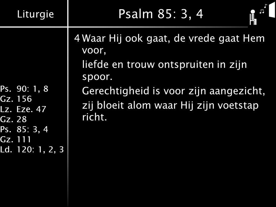 Liturgie Ps.90: 1, 8 Gz.156 Lz.Eze. 47 Gz.28 Ps.85: 3, 4 Gz.111 Ld.120: 1, 2, 3 Psalm 85: 3, 4 4Waar Hij ook gaat, de vrede gaat Hem voor, liefde en t