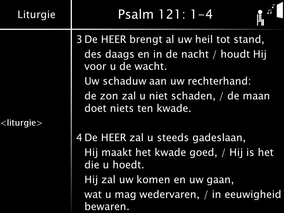 Liturgie Psalm 121: 1-4 3De HEER brengt al uw heil tot stand, des daags en in de nacht / houdt Hij voor u de wacht. Uw schaduw aan uw rechterhand: de