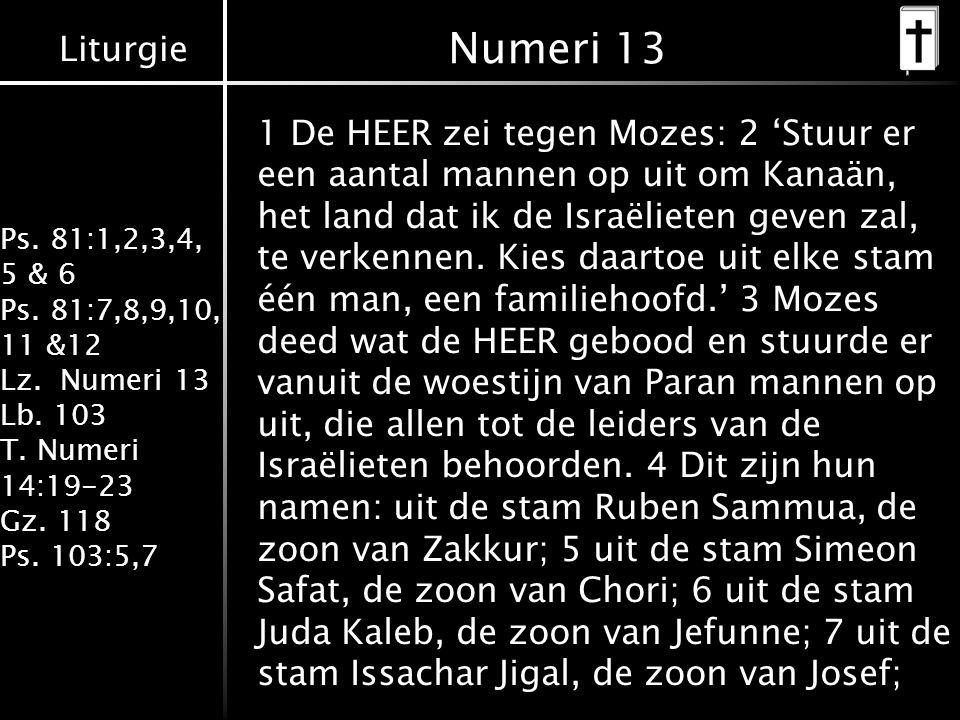 Liturgie Ps. 81:1,2,3,4, 5 & 6 Ps. 81:7,8,9,10, 11 &12 Lz. Numeri 13 Lb. 103 T. Numeri 14:19-23 Gz. 118 Ps. 103:5,7 Numeri 13 1 De HEER zei tegen Moze